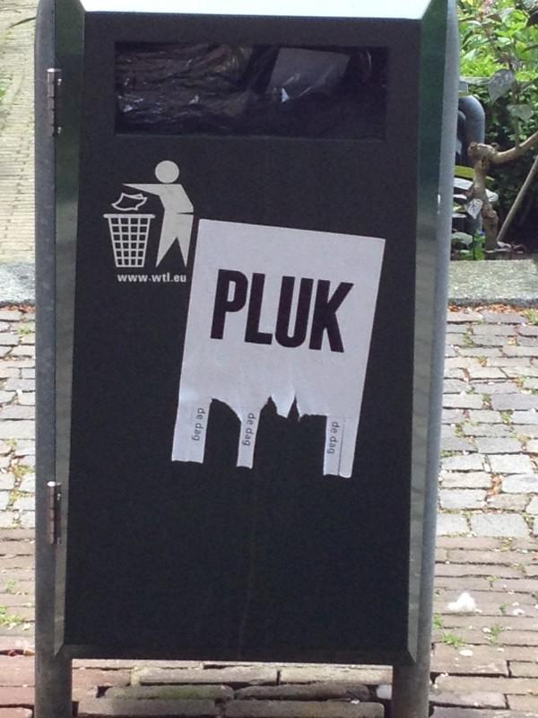 Pluk de dag - straatkunst